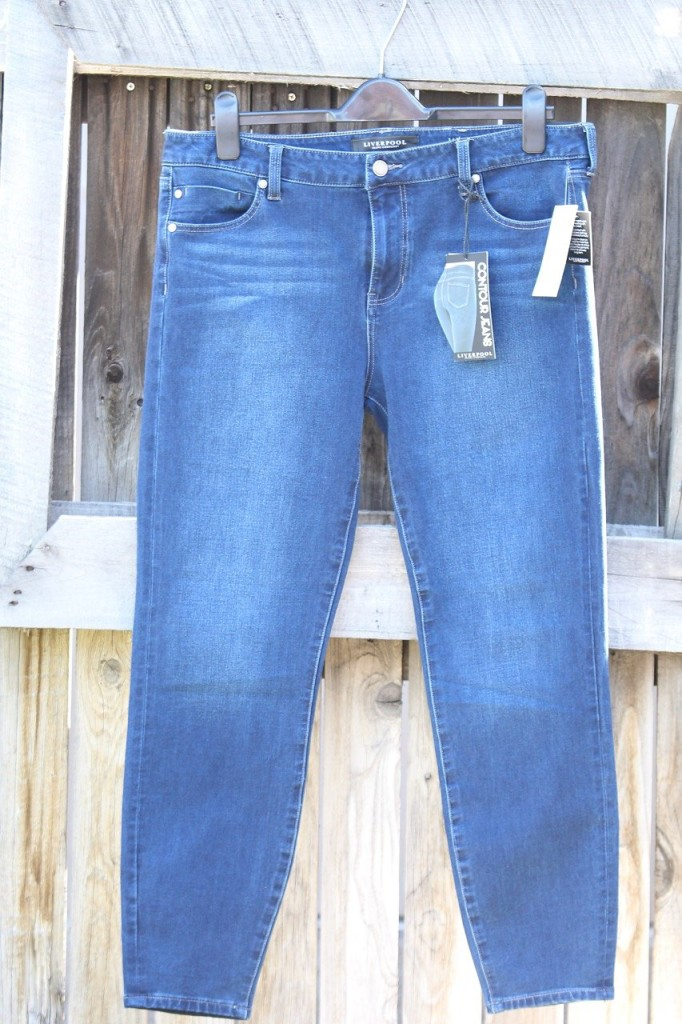 March Stitch Fix - Skinny Jeans